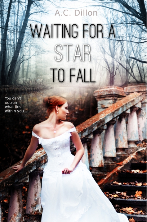 Waiting For A Star To Fall A.C. Dillon